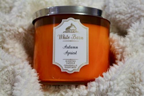 Bath & Body Works Autumn Apricot Candle | Chloe Plus Coffee